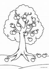Coloring Tree Printable Worksheets Apple Sheets Cool2bkids Kindergarten Leaves Printables Different Worksheet Fall Palm Children Cartoon Leaf Template Giving Shades sketch template