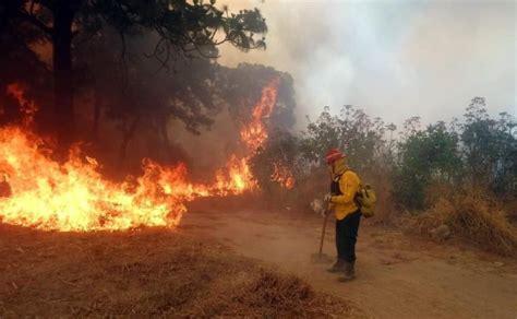 afecta incendio mil  hectareas de la primavera