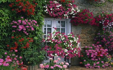 Beautiful, Flower, Gardens, , Beautiful, Flower, French
