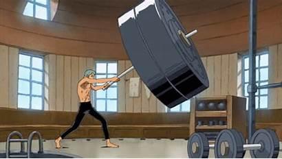 Zoro Training Weight Bigger