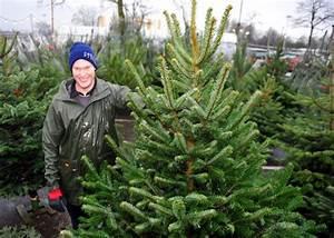 Künstliche Weihnachtsbäume Kaufen : wiesbadenaktuell weihnachtsb ume zum selbst schlagen ~ Indierocktalk.com Haus und Dekorationen