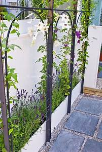 Best 25 clematis trellis ideas on pinterest vine yard for White garden walls