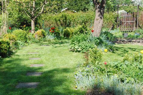 Pilze Im Garten Bodenbeschaffenheit by Moos Im Rasen Beseitigen Moos Im Rasen Garten Ratgeber