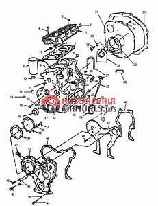 Farmtrac Tractor 35  45  60 Parts Manual