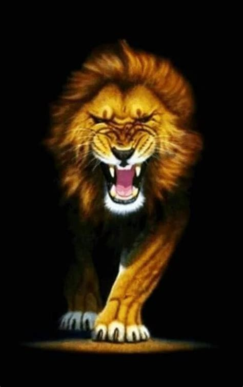 Gambar Kepala Singa Arema Mengaung Galeri Timnesia