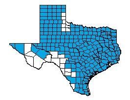 texas star network
