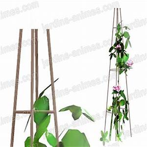 Support Plantes Grimpantes : tuteur colonne rosier grimpant tuteurs rosiers ~ Dode.kayakingforconservation.com Idées de Décoration