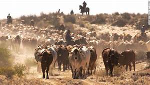 Australian ranch the size of Ireland sold to Chinese ...
