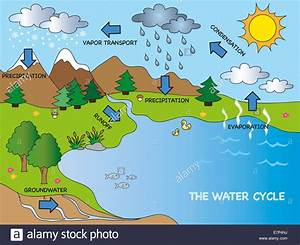 Illustration Of Funny Water Cycle Stock Photo  73630750