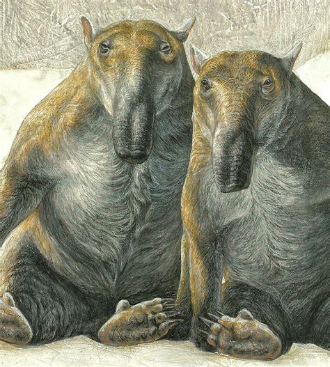 animals prehistoric extinct mammals dinosaurs dromornis megafauna ancient marsupials palorchestes tree rare weird cow creatures teeth dinosaur powerful limbs animal