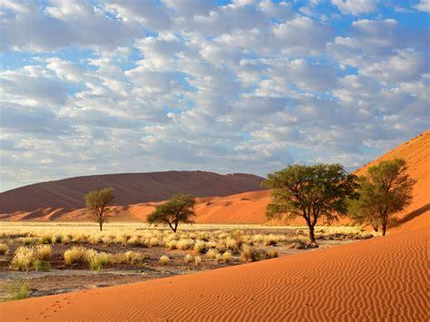 sossusvlei namib naukluft national park namibia