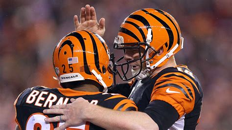 nfl playoff picture bengals steelers    spot