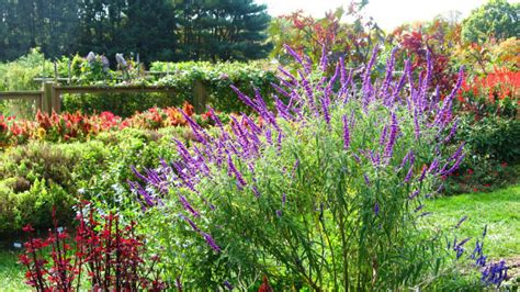 new jersey garden here are the 12 most beautiful gardens you ll see in