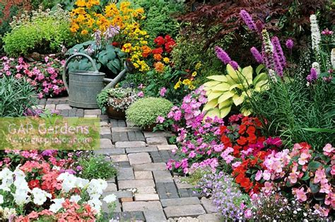 cottage style garden plants gap gardens bright and breezy summer bedding plants flank a cottage garden style path with an