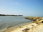 Exploring St. Vincent Island near Port St. Joe, FL ...