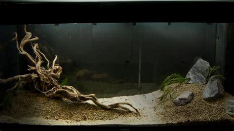 Setup Aquascape by Aquarium Setup Aquascape Step By Step And Product