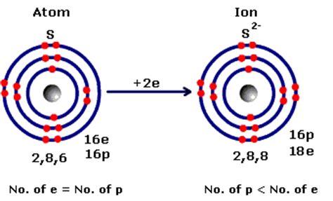 Blank Atom Diagram Blank Ecosystem Diagram Elsavadorla