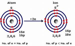 Blank Atom Diagram Blank Ecosystem Diagram ~ Elsavadorla