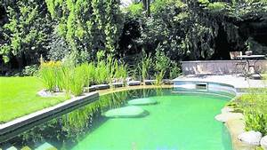 Schwimmteich Im Garten : ein badetraum im garten schwimmteiche sind ideal zur abk hlung im sommer wohnen ~ Sanjose-hotels-ca.com Haus und Dekorationen