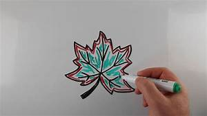 How To Draw a Maple Leaf for Kids / Drawing on a ...