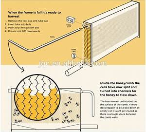automatic honey outflow bee hive/ Automatic flow honey ...