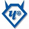 FC Chertanovo Moscow - Wikipedia