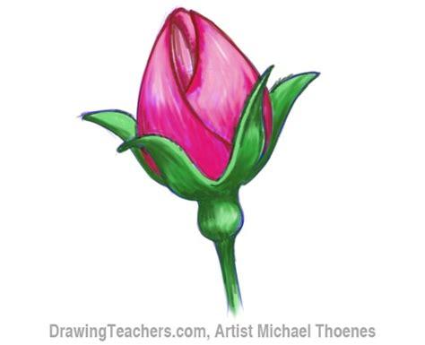 draw  rosebud
