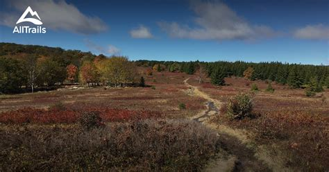 dolly sods west virginia wilderness alltrails map trails area parks