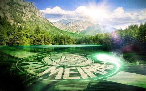 Download wallpapers SE Palmeiras, fan art, Brazilian Serie ...