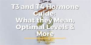 T3 And T4 Hormone Guide  What They Mean  Optimal Levels  U0026 More