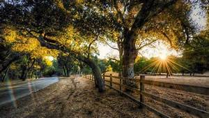 Nature, Hdr, Sunset, Trees, Road, Fence, Wallpapers, Hd, Desktop, And, Mobile, Backgrounds
