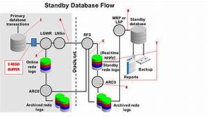 Oracle Database And Oracle Apps