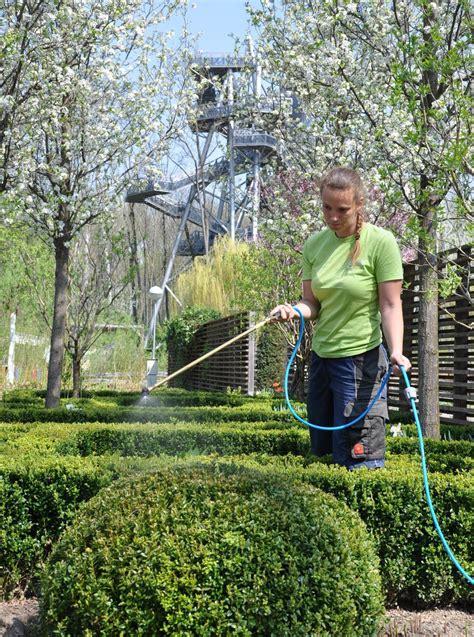Der Garten Tulln by 26 April 2013 Kf Dem Buchsbaumz 252 Nsler Auf Der Garten