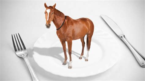 horse meat scandal eating food beef eat horsemeat plate europe growing taco explained adulteration horses bell equine fraud does gawker