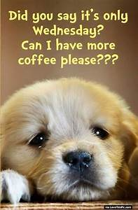 Did you Say Its Only Wednesday Can I Have More Coffee ...
