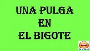 Los mejores chistes del mundo en español Buenos chistes