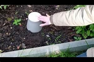 Ameisen Im Garten : video rote ameisen im garten was tun ~ Frokenaadalensverden.com Haus und Dekorationen