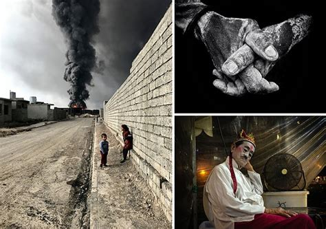 iphone photography award winners announced digital