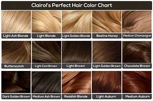 Rose Gold Hair Colour Chart Girls Hair Color Chart By Azurevirgo Brown Hair Color