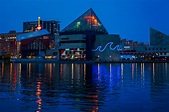 Review of the National Aquarium Baltimore Inner Harbor