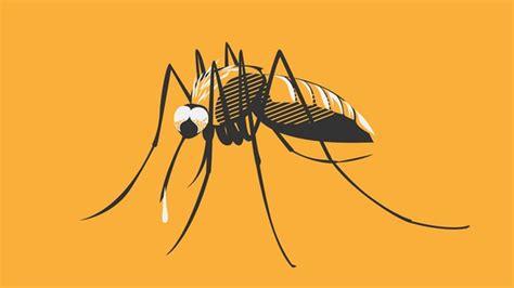 Tipps Gegen Mücken by F 252 Nf Tipps Gegen Das Jucken Was Hilft Wirklich Bei