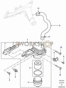 Oil Cooler And Filter - 2 2 Tdci