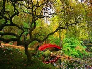 48, Nature, Scenes, Wallpaper, On, Wallpapersafari