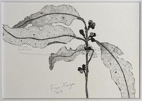 Best Images About Botanical Pen Ink Drawings