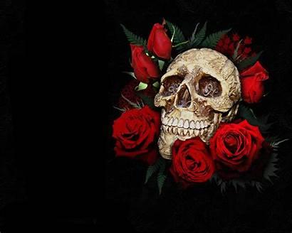 Skull Rose Background Dark Wallpapers 1920 Wall