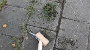 Unkraut Zwischen Pflastersteinen Entfernen : unkraut bequem und rein mechanisch entfernen frag mutti ~ Michelbontemps.com Haus und Dekorationen