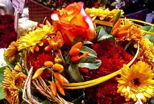 Blumen Im November : die besten seiten von feuerbach blumen ~ Lizthompson.info Haus und Dekorationen