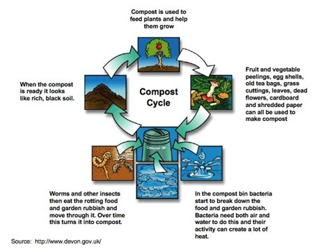 Composting leads to a healthful ground