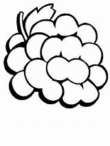 Coloring Grapes Fruit sketch template