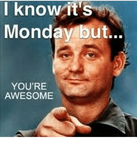 You Re Awesome Meme I It S Monday But You Re Awesome Meme On Me Me